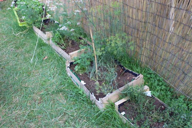 der Garten vor der Küche